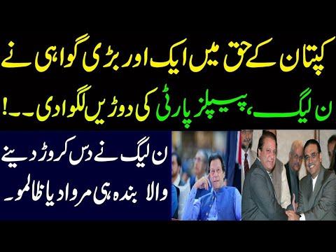عمران خان کے حق میں ایک اور بڑی گواہی نے ن لیگ ، پیپلز پارٹی کی دوڑیں لگوادی