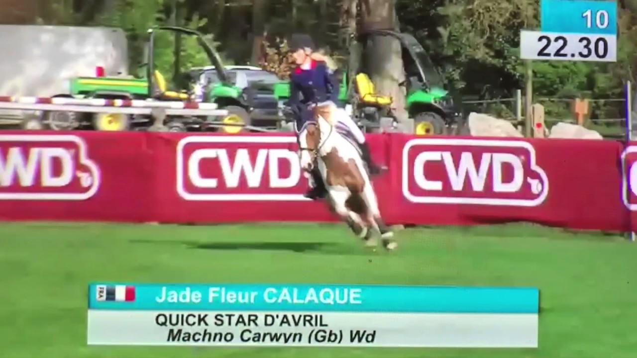 Calaque Jade Fleur Quick Star D Avril 125 Sans Faute Classes