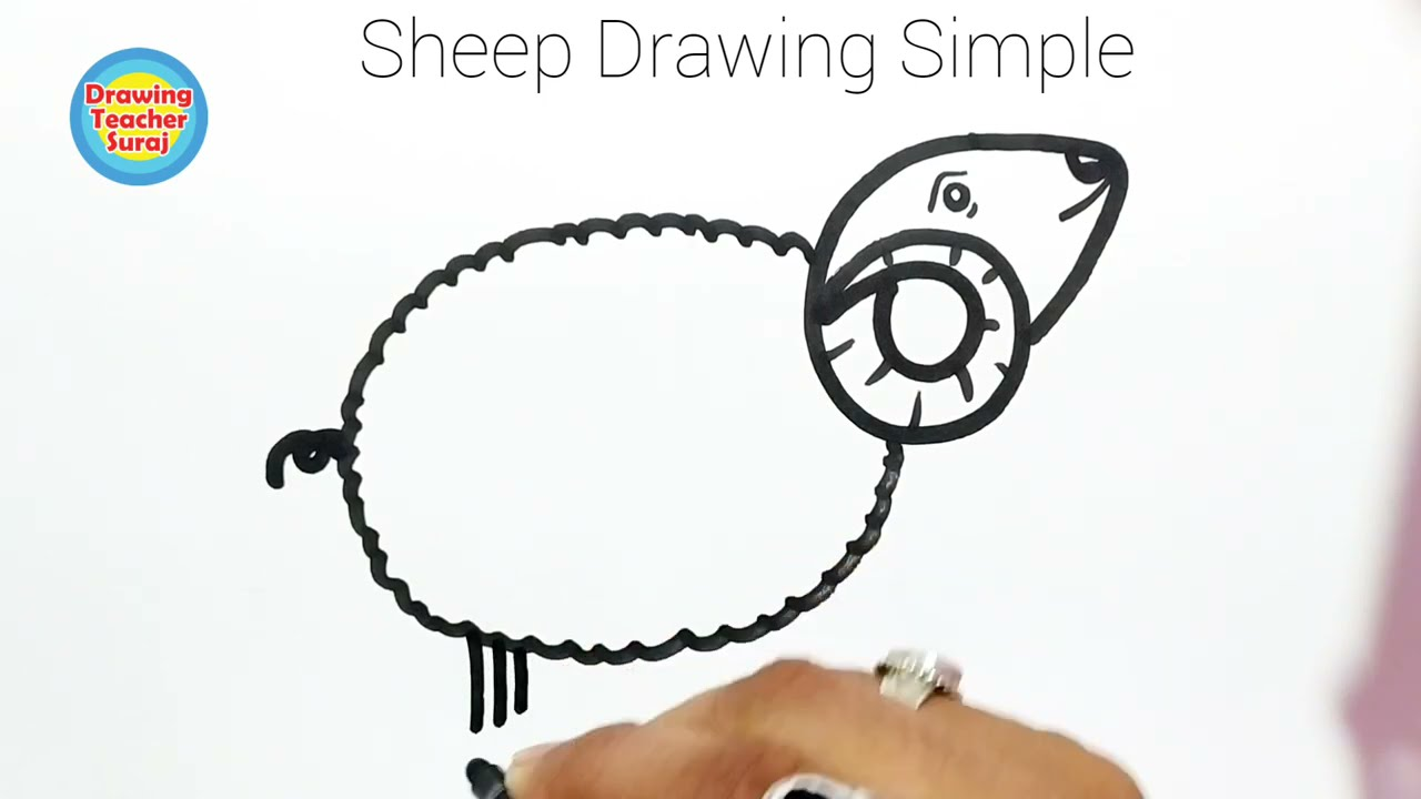 How TO Draw A Sheep Easily From Number 6