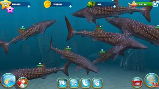 Fish Farm 3 | Level 93 - 200 Whale Shark | Update #11