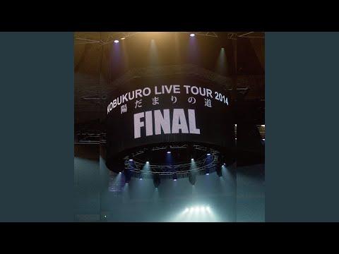 Hidamari No Michi (Live)