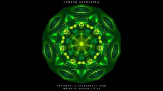 Hadron Orchestra - Psychedelic Resonances from Infinite Possibilities [Full Album]