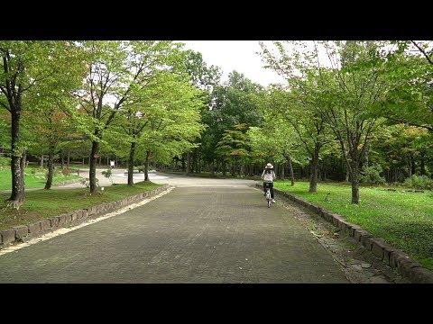 初秋の神楽岡公園2019