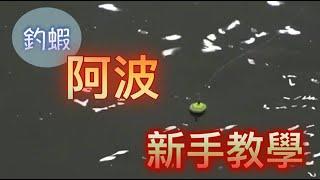 蔡孟釣蝦課本#2(釣蝦)最簡易的阿波釣組 訊號超敏感 給新手體驗阿波釣組帶來的感覺|台湾のエビ