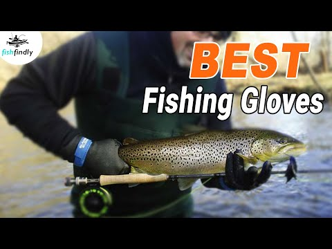 Best Fishing Gloves In 2020 – Top Products Comparison & Reviews!