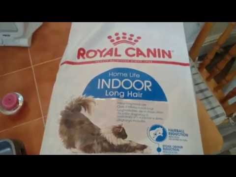 Royal canin indoor long hair vs royal canin kitten biscuits