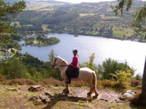 Riding Stables, Kenmore, Perthshire, Scotland