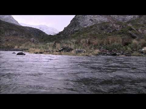 Trailer do filme O Botão de Pérola