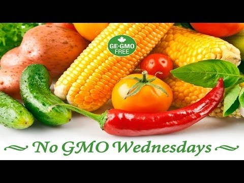 No GMO Wednesdays - Can GMO's Feed the world?