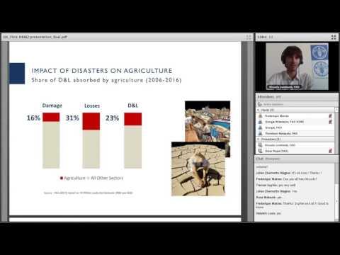 FAO Webinar on resilience #10 – DRM2