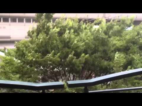 Yamada Suita, as Typhoon Halong Approaches Japan
