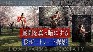 今回はHSSを使って桜の昼間を真っ暗にするポートレート撮影の動画アップ...