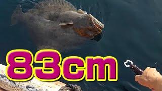 【かかり釣り】通称「座布団」と呼ばれる巨大生物が開始一投目で・・・