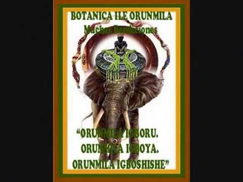 Orumila U Orula Historia Rezo Y Canto Botanica Ile Orunmila Youtube