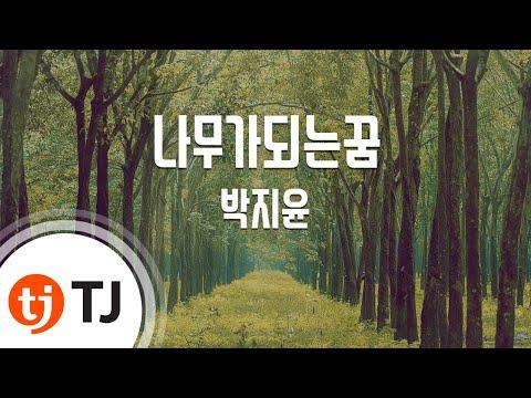 [TJ노래방] 나무가되는꿈 - 박지윤 (Park, Ji-Yoon) / TJ Karaoke