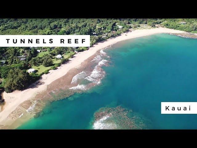 Tunnels Reef, Kauai