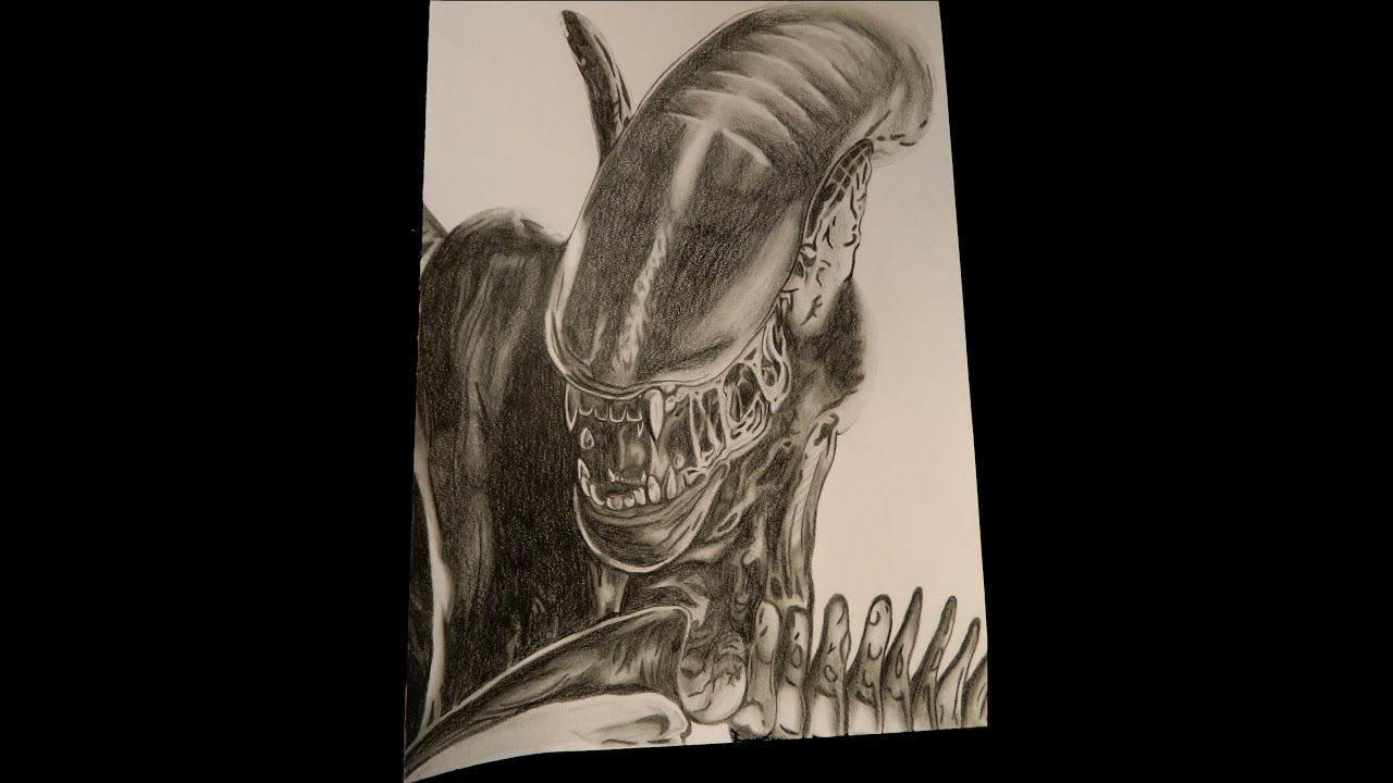 aliens vs predator drawings - photo #21
