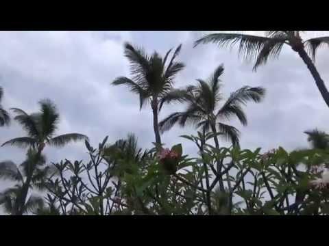 Kona Island of Hawaii 1