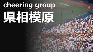 県立相模原のオレンジな応援が迫力満点(横浜6-8相模原 / 2019準々決)