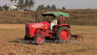 Tractor ploughs Indian agricultural field - mechanized agriculture in India