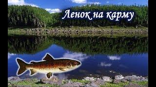 как заработать карму в русской рыбалке