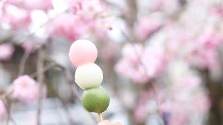 Good Morning Japan Vlog: Days 10 to 12