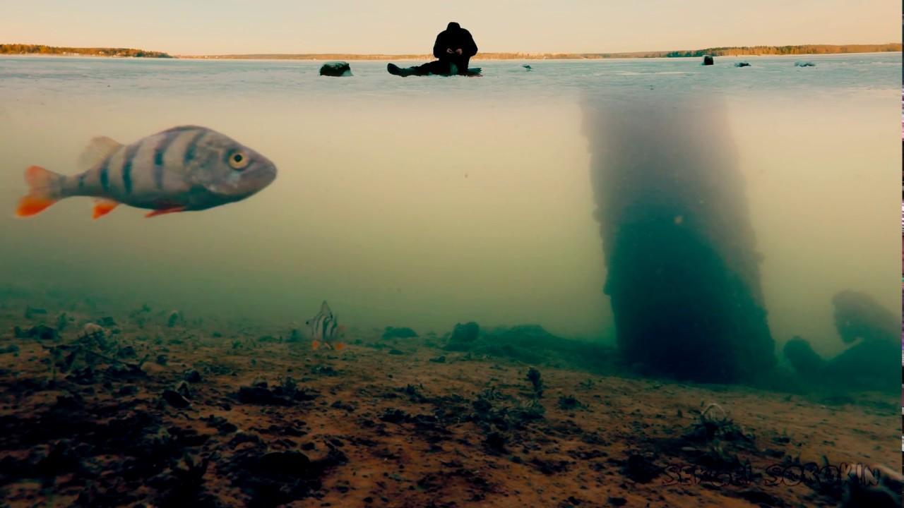 зимняя рыбалка в районе
