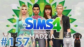 The SimS 4 #157 - Urodziny Basi i plany na przyszłość