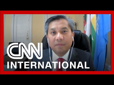 Myanmar UN Representative speaks after issuing plea to the world