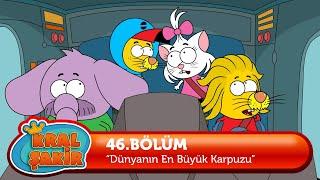 King Shakir - World's Biggest Watermelon (Cartoon)