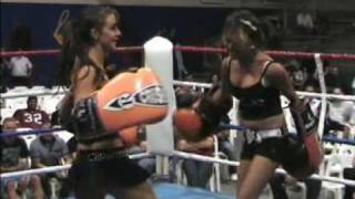 Foxy Boxing.mpg