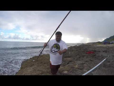 ulua fishing