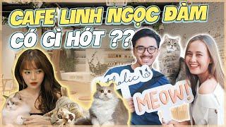 Cafe mèo của Linh Ngọc Đàm : Có gì mà giới trẻ ùn ùn kéo tới !