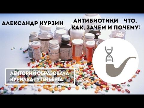 как пить антибиотики