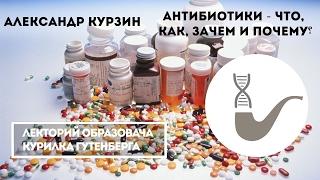Александр Курзин - Что такое антибиотики