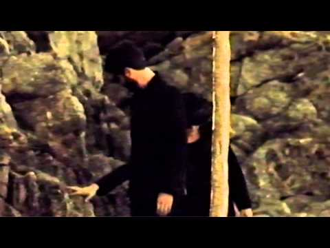 We Are Serenades - Birds [Official Video]