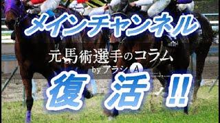 メインチャンネル復活のお知らせ!! 元馬術選手のコラム