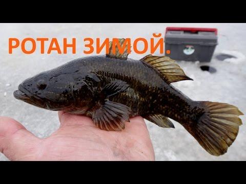 ловля ротана в нижегородской области