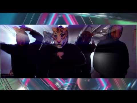 Martin Garrix - Animals (DJ Xclusiive DVJ remix)