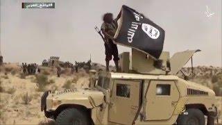 حرب استنزاف طويلة بين تنظيم الدولة والتحالف الدولي