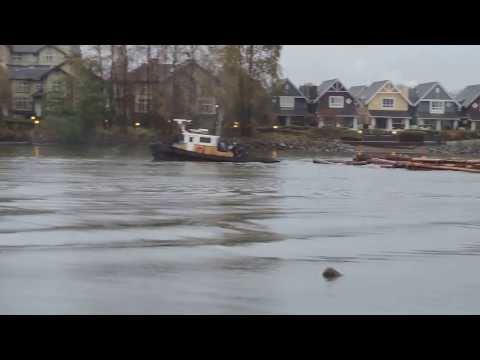 Tug boat pulling logs on Fraser River, New Westminster, BC, Canada