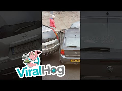 Terrible Parking Job || ViralHog
