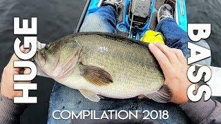 HUGE Bass Topwater Blowups (Rats / Frogs) - DROP SHOT - Live Bait (Golden Shiner) - Compilation 2018