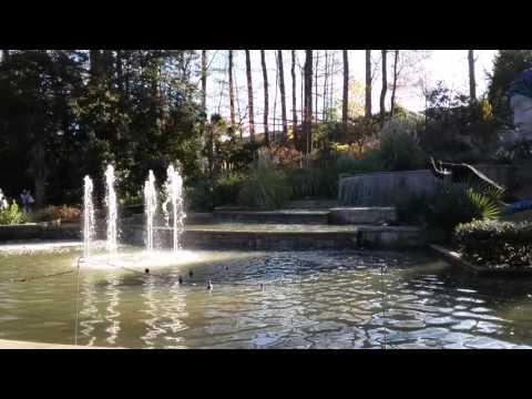 Botanical Garden en Atlanta 28/11/15
