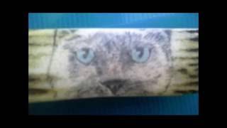 Скримшоу голова кота (материал рог лося.)
