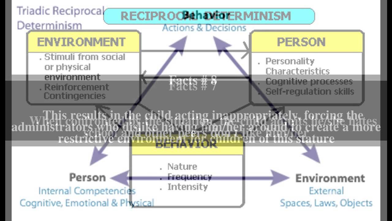triadic reciprocal determinism