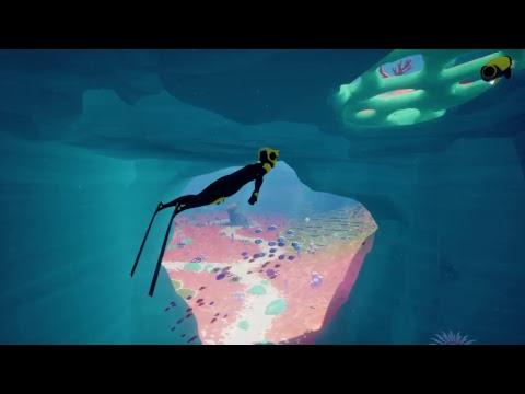 Diving in the deap ocean