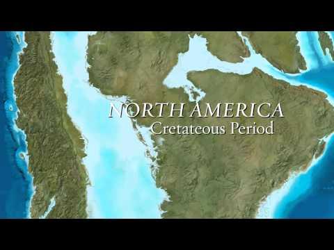 Cretaceous Seas Exhibit at Mount Royal University