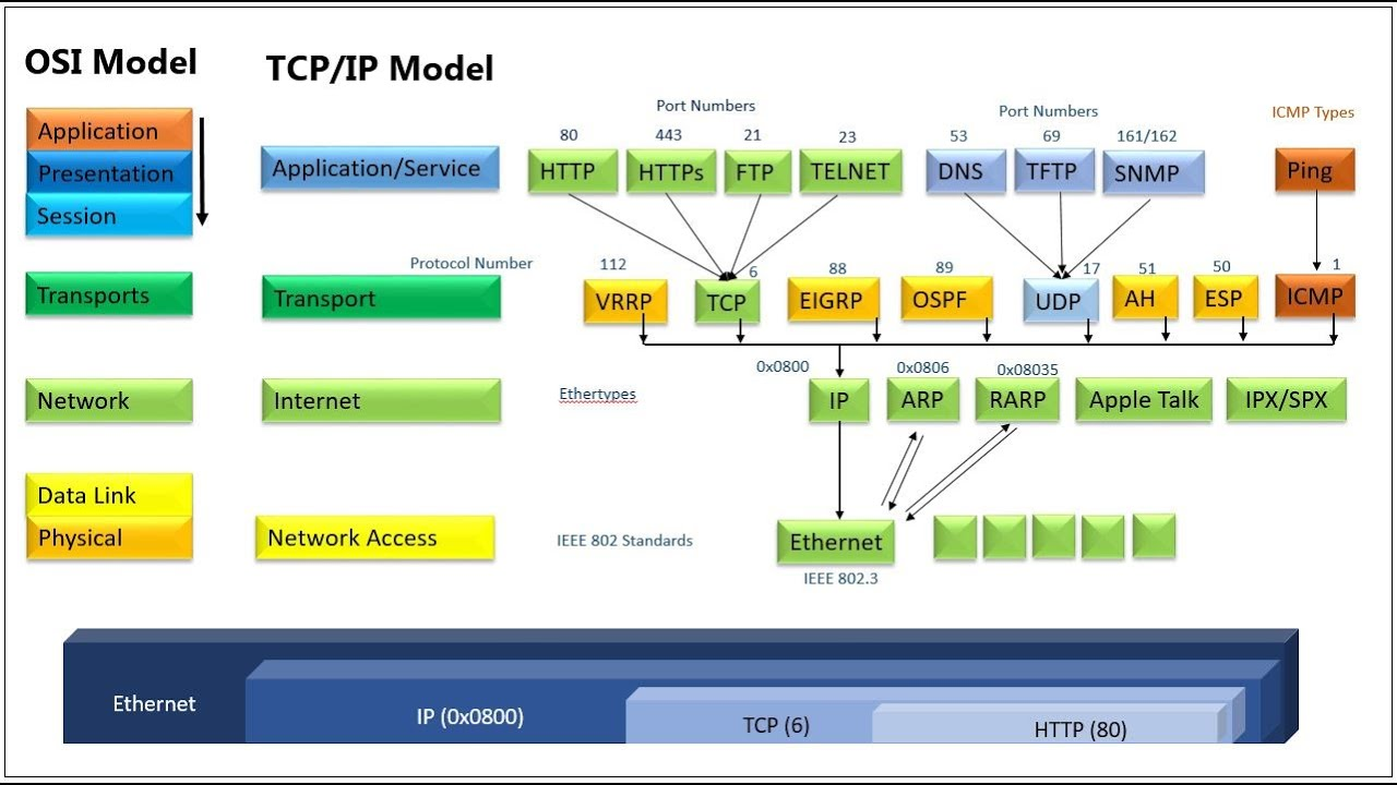 5 tcp ip model its