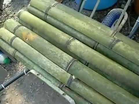 竹の熱湯処理